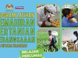 program latihan kemahiran pertanian kebangsaan plkpk