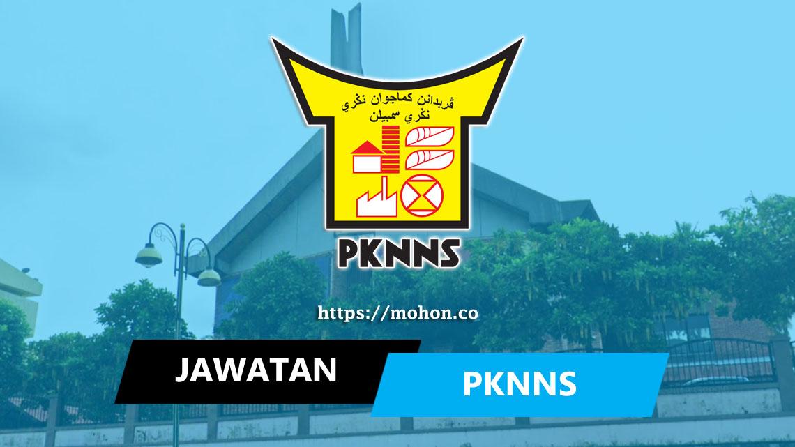 Perbadanan Kemajuan Negeri, Negeri Sembilan (PKNNS)