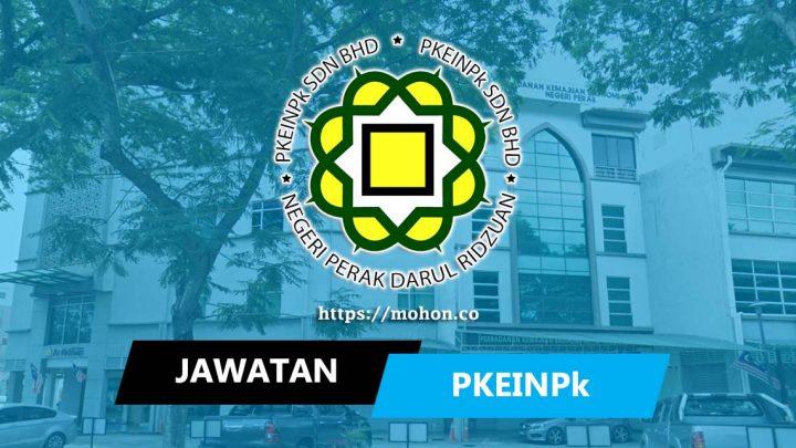 PKEINPK Sdn Bhd (PSB)